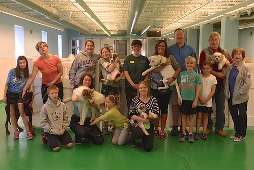 """Puppy Head Start, Session C, Winter 2015-Sat; Class Photo-01 • <a style=""""font-size:0.8em;"""" href=""""http://www.flickr.com/photos/65918608@N08/17138596267/"""" target=""""_blank"""">View on Flickr</a>"""