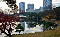 Hamariky (Perfect Gnat) Tags: lake reflection building tree nature water japan skyscraper garden tokyo hamarikyu