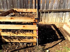 Compost: turned. (shawncampbell) Tags: gardening compost compostbin