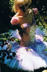 tutu in roses (deadbudgie) Tags: roses ballet 2004 garden design costume lily sydney tutu tafe