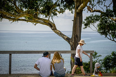 Huskisson Streetscapes (Visit Shoalhaven) Tags: ocean sea tree water relax coast back play view south australia sit pathway shoalhaven unspoilt