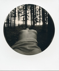 particolari 1 (carlostella) Tags: blackwhite nude artisticnude girl woman shooting nature wild wood tree polaroid impossibleproject italy i1 impossibleprojecti1