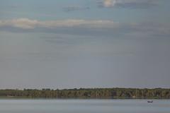 Mangue _MG_0459_PHZ (Paulo Henrique Zioli) Tags: brazil verde green brasil mar pesca canoa pescador fishman casario mangue valedoribeira tarrafa iguape atlanticforest mataatlntica cerco caiara mardedentro marpequeno tocadobugio