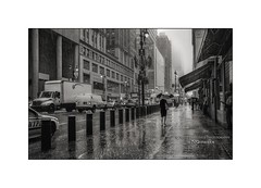 Heavy Rain on 42nd Street (Nico Geerlings) Tags: 42ndstreet rain heavy raining umbrella thunderstorm manhattan grandcentral midtown nyc ny usa us newyorkcity ngimages nicogeerlings nicogeerlingsphotography leicammonochrom 35mm summicron