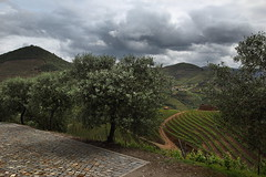 Douro 11 (gsamie) Tags: guillaumesamie gsamie canon 600d t3i portugal douro porto landscape river mountain wideangle sky clouds wine portwine grapes grapevine olivetrees sandeman