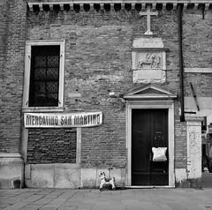 Market, Venice (austin granger) Tags: market venice horses correspondence cross religion childhood knight square film gf670 italy storefront sidewalk decay change time austingranger