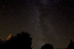 Milkey Way over the Trees (Venvierra @ GothZILLA Photography) Tags: gothzillaphotography canon 600d canon600d eos canoneos canoneos600d stars starscape nightsky night starrynight weather clearskies sky starrysky starry astrophotography trees powhill derwent reservoirmilky way