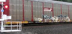 lens - eye (timetomakethepasta) Tags: lens eye frost vsb freight train graffiti art conrail autorack crossing new york