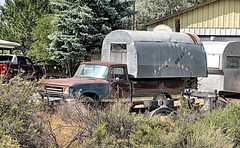 IH Mobile Kitchen? (Eyellgeteven) Tags: ih internationalharvester international cornbinder camper food kitchen catering cateringtruck 34ton pickup pickuptruck truck 1970s 4x4 fourwheeldrive vintage vehicle classic faded rust rusty rusted rustyandcrusty retired rural beater jalopy junker oxidized oxidation dented dents dent beatup green loaded patina lettering letters stenciled orphan outtopasture old eyellgeteven americanmade madeinusa survivor forgotten abandoned used ugly