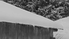 pf (9)-600 (luna_magdalenae) Tags: le froid alpes montagnes neige sallanches megve combloux mont blanc
