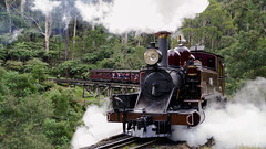 Puffing Billy (Radha Krsna Photos) Tags: train puffing puffingbilly belgrave lake reflections steam steamengine tourism birdsland reserve nature fun