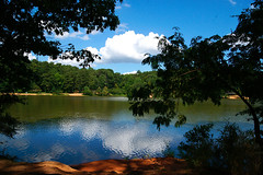 A SummerDay (redhorse5.0) Tags: park murphycandlerpark brookhavengeorgia redhorse50 sonya850 nature clouds seascape