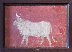 IMG_0372 (jaglazier) Tags: 1stcentury 1stcenturyad 2016 72316 animals apis architecturalelements bulls campania copyright2016jamesaglazier easternreligions egyptian frescoes isis italy july mammals museoarcheologiconazionale museoarcheologiconazionaledinapoli mysteryreligions naples napoli national nationalarchaeologicalmuseum nazionale pompeii archaeology fresco gods religion rituals wallpainting
