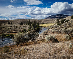 Lamar River (Carolannie: out and about, not lost yet) Tags: sonyrx100m2 wyoming yellowstonenpwy lightroom lightroompresets vignette lamarriveryellowstonenp fall autumn citritgroup