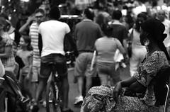 E li guardo passare (Gaia83) Tags: veterinarifotografi fieredisangiuliano macerata street