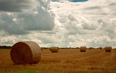 Rustic melancholy (Ans van de Sluis) Tags: germany rustic rural landscape ansvandesluis hay haybales clouds sky