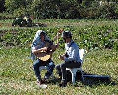 Music on the Farm (gapey) Tags: hgxoxbow homegrown oxbowfarm farm tour lunch seattle pickle beets carrots music musicians bluegrass