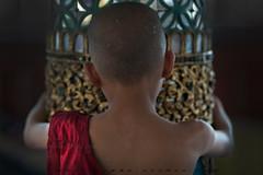 _MG_2846-le-14_04_2016_wat-thail-wattanaram-maesot-thailande-christophe-cochez (christophe cochez) Tags: burmes burma birmanie birman myanmar thailand thailande maesot myawadyy monk bonze novice religion watthailwattanaram travel voyage bouddhisme buddhism portrait