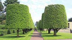 Amerikaanse begraafplaats (19) (Kok Vermeulen) Tags: frankrijk normandi vakantie