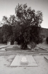Exa 1C Spadra Cemetery 6 () Tags: vintage retro classic film camera losangeles california riverside history west coast architcture eastgerman ddr gdr exa dresden slr 35mm black white bw kodak tmax m42 abandoned cemetery