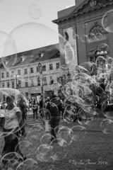 bubbles in Praha (Nicolas Ferrer) Tags: canon canoneos60d eos60d eos sigmalenses sigma1770mm blackandwhite blancoynegro bnw bw street streetphotography streetphoto streetphotoprague stphotographia