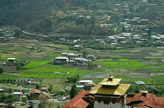 Bhutan-Paro plain covered with green fields