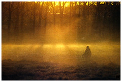 *** (Spartaxus) Tags: fog rollei sunrise pentax iso400 mesuper redbird ciechanów