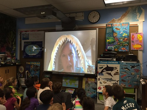Skype Classroom - Sharks by Barrett.Discovery, on Flickr