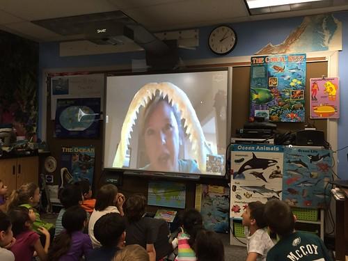Skype Classroom - Sharks by Barrett.Discovery, on Flickr