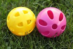 No White Balls Here 04132015 (Orange Barn) Tags: game yellow baseball magenta balls plastic whiffleballs 365daysincolour