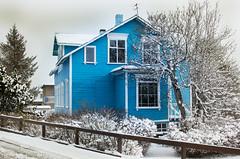 Blue (k.agnars / Kristjana Agnarsdttir) Tags: snow iceland snowfall akureyri snjr aalstrti innbrinn snjkoma gamalths bltths innbrinnakureyri snowinakureyri kristjanaagnarsdottir annarsumardagur