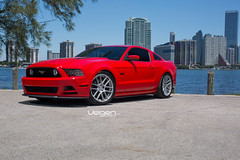 Ford Mustang GT on Velgen Wheels VMB6 Matte Silver (VelgenWheels) Tags: pictures california coyote new uk red usa canada cars ford car cali america us yahoo google flickr cobra power florida photos russia miami muscle swiss wheels performance deep tire images ukraine daily fresh follow tires pony american swizterland shelby mustang gt custom 50 rim rims coupe lowered v8 bing tyres whips tyre exhaust concave ask upr nitto gt500 askcom youtube felgen velgen illest swedan americanmuscle fitment s197 invo usdm concavewheels velgenwheels vmb6