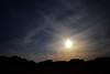 20150511_012_2 (まさちゃん) Tags: silhouette 雲 空 シルエット 茜色 夕暮れ時