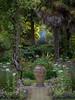 198/366 Abbotsbury Evening - 366 Project 2 - 2016 (dorsetpeach) Tags: abbotsburysubtropicalgardens abbotsbury subropical gardens evening twilight 366project aphotoadayforayear 365 366 2016 second365project
