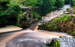 The Old Gunpowder Works trail (absynth100) Tags: river wales uk moss trees water rocks breconbeacons landscape flow flowing green