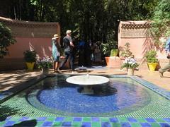 Marrakesh_9796 (JespervdBerg) Tags: holiday spring 2016 africa northafrican tamazight amazigh arab arabic moroccanstyle moroccan morocco maroc marocain marokkaans marokko marrakech marrakesh majorelle
