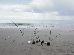 ikebana by the sea .... seakebana? (wild goose chase) Tags: sea ocean ikebana pebble stone landart