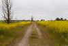 IMG_0784.jpg (TvdMost) Tags: oostvaarderplassen