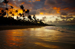 moments worth living for ... (mariola aga ~ OFF vacation) Tags: puntacana dominicanrepublic atlanticocean ocean water waves wet sand shoreline trees palmtrees beach evening sunset sky clouds fiery sunlight reflection silhouette wideangle 1020mmsigma thegalaxy infinitexposure