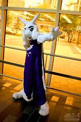 Undertale 8 (MDA Cosplay Photography) Tags: undertale game videogame cosplay costume photoshoot otakuthon 2016 montreal quebec canada chara asriel