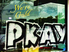 We're Gold (Steve Taylor (Photography)) Tags: were gold pkay shop window art digital tag streetart graffiti black green yellow red white blue glass newzealand nz southisland canterbury christchurch cbd city trees reflection texture cloud