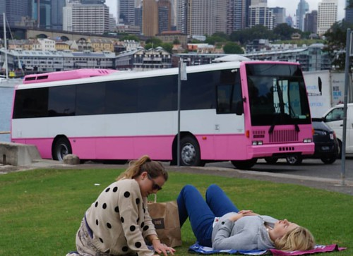 It's going to be a beautiful weekend! Party Shuttle on...and soak in some sun just like our PinkPartyBus is doing.