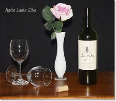 Wine and a Rose... (Maria Luiza S) Tags: wine rose pink rosa stilllife naturezamorta bottle garrafa rolha cork