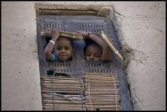 DSC_6672 (Sgaffo) Tags: yemen travelling 20072008 socotra