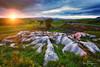 Winskill Stones (© Ian Flanagan) Tags: northyorlshire sunset limestone rocks tree landscape sunburst winskillstones wideangle golden light