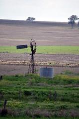 10 foot IBC geared Simplex windmill, Cunningham Highway, Queensland (sarracenia.flava) Tags: ibc intercolonial boring company geared simplex windmill warwick queensland australia