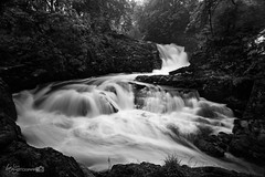Beezley Falls (Forty-9) Tags: waterfall ingleton 11082016 forty9 2016 ingletonwaterfallstrail tomoskay lightroom efslens canon yorkshire eos60d yorkshiredales lightroommobile efs1022mmf3545usm longexposure 11thaugust2016 august holiday water river blackandwhite bw beezleyfalls