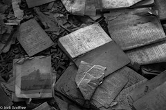 School books in chernobyl (Dave and Jodi Piddington) Tags: chernobyl ukraine holiday decay abandonedbuildings death history nucleardisaster accident travel dark tourism darktourism photography architecture nuclear disasters adventure kiev blackandwhite books urbex