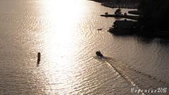 Boat trip with friends (Hopeasuo) Tags: turku archipelago sea sun boat finland suomi