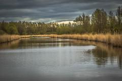 Oostvaardersplas (inekehuizing) Tags: nature landscape spring natuur lelystad landschap voorjaar oostvaarderplassen inekehuizingfotografie